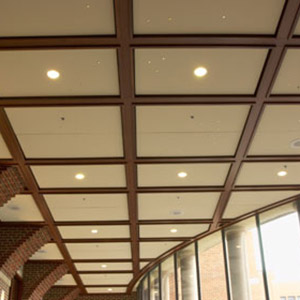 Acoustical Ceilings Drop Ceilings Decorative Ceilings